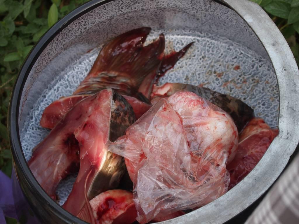 soupe poisson baja